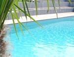 Piscine béton versus piscine naturelle
