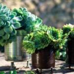 7 conseils et astuces d'aménagement extérieur
