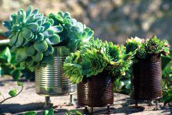 7 conseils et astuces d 39 am nagement ext rieur - Deco jardin recyclage ...
