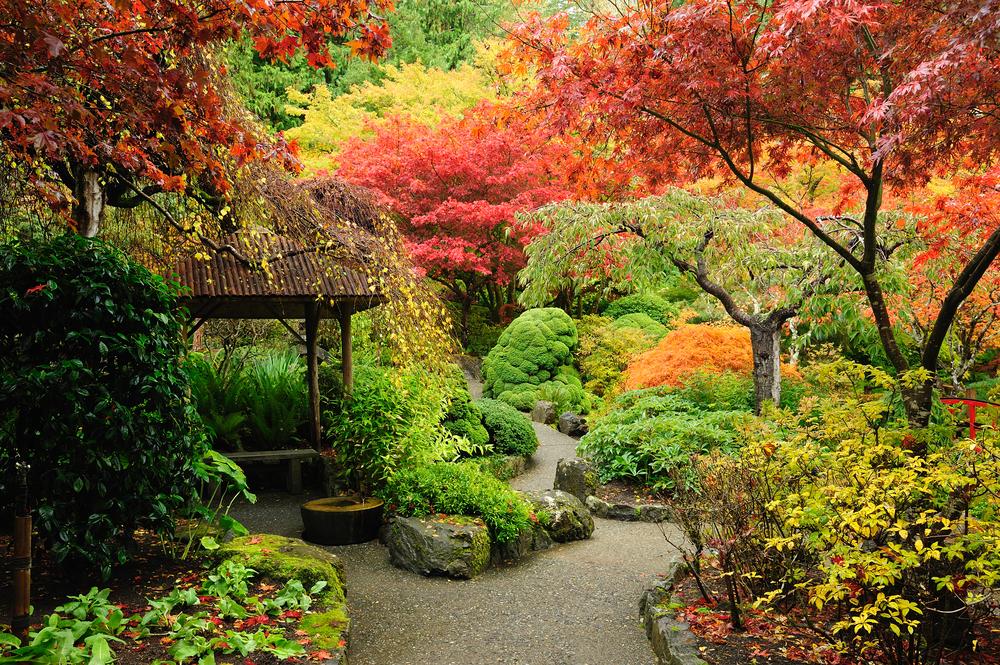 Aménager le jardin de ses rêves