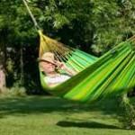 Guide des tendances sur les accessoires de jardin