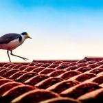 Refaire sa toiture, un projet qui vous couvre