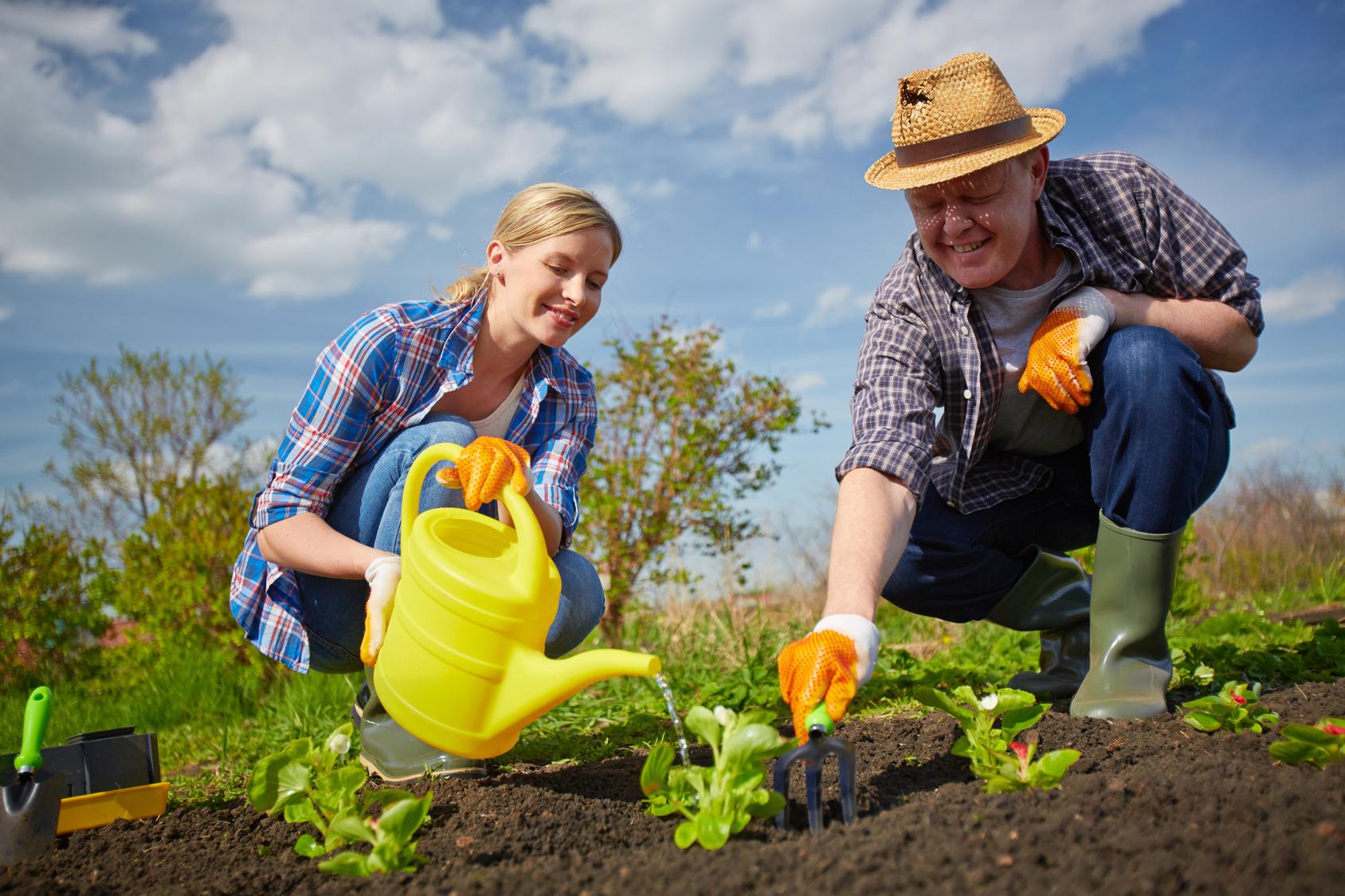 Pourquoi faire appel un jardinier for Jardinier professionnel