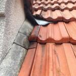 Réparer une fuite de toiture