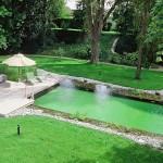 La piscine naturelle: alliez enfin plaisir et écologie