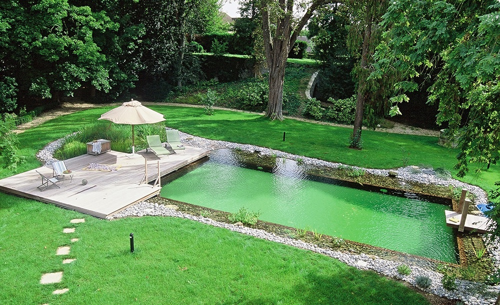 Aménagement piscine naturelle