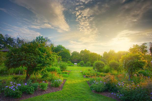 Définir son style de jardin c'est important !