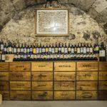 Comment bien débuter une cave à vin ?