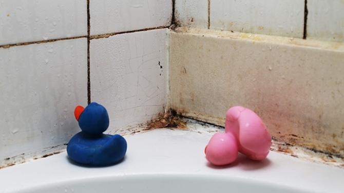 Conseils pour prévenir la moisissure dans la salle de bain