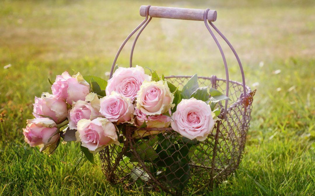 Conseil déco: quelle rose éternelle choisir?