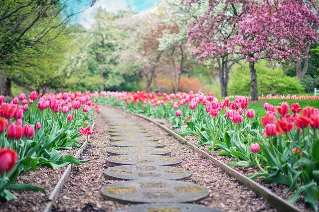5 astuces pour décorer votre jardin facilement