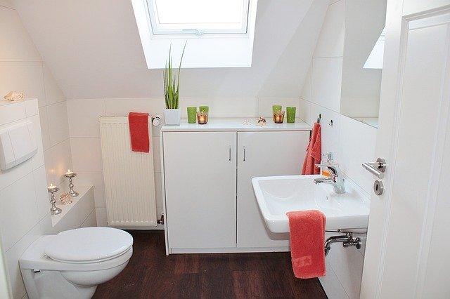 Quand utiliser un sanibroyeur pour vos toilettes ?