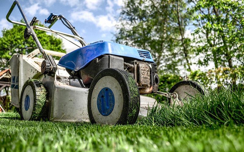 Comment bien entretenir sa pelouse ?
